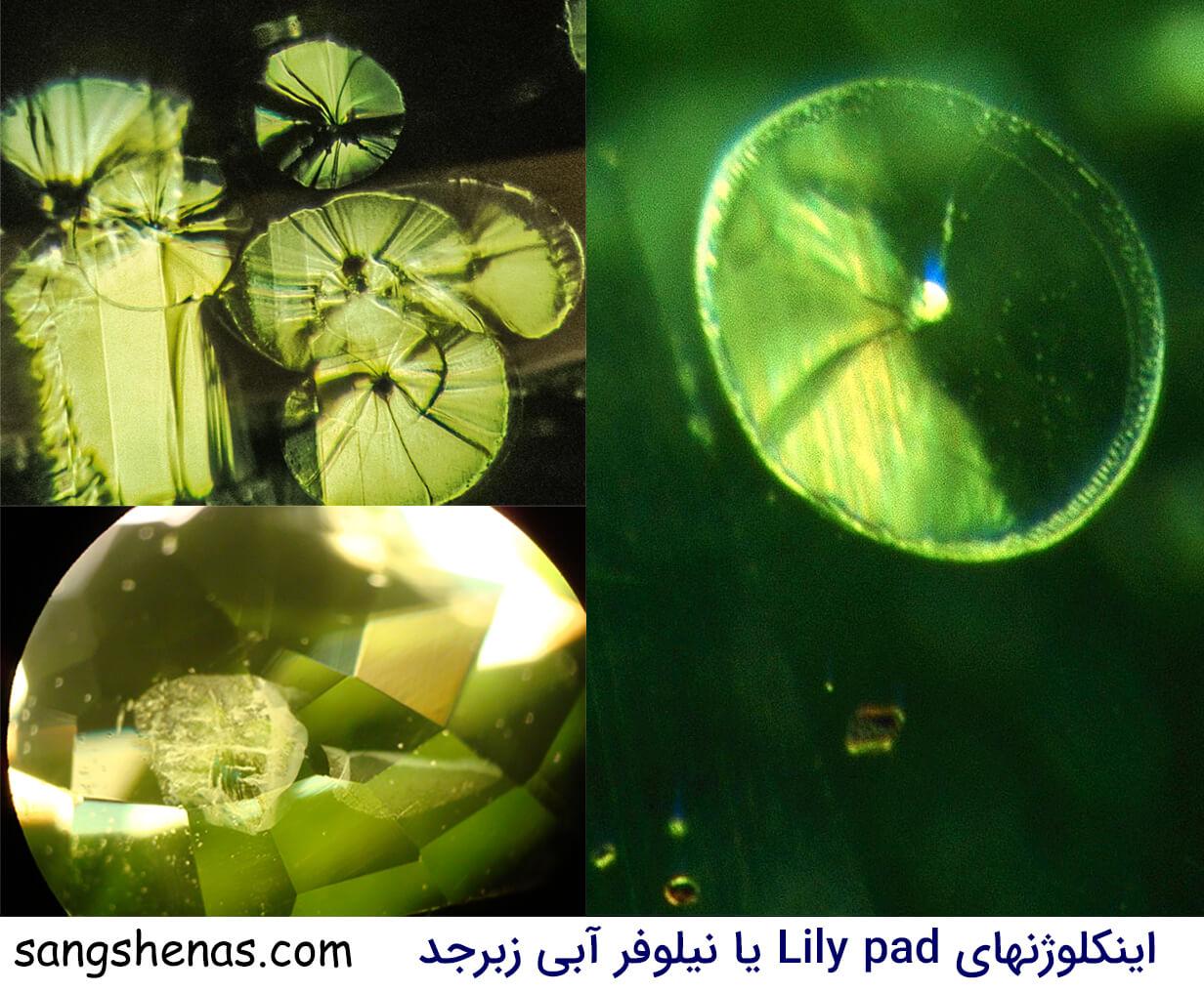 درونگیرهای Lily pad یا نیلوفر آبی سنگ زبرجد