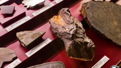 تصویر از انواع شهاب سنگ ها با عکس و مشخصات آنها