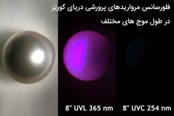 تشخیص سنگ مروارید زیر نور uv