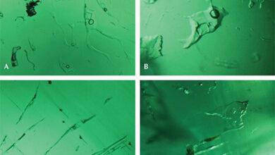 تصویر از زمردهایی با اینکلوژنهای سه فازی و تاثیرشان بر تعیین منشا آنها