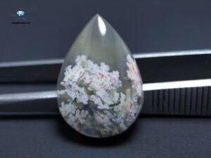 خرید سنگ شجر سفید شکوفه بهاری